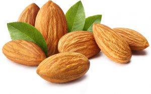 almonds and almond tree leaves